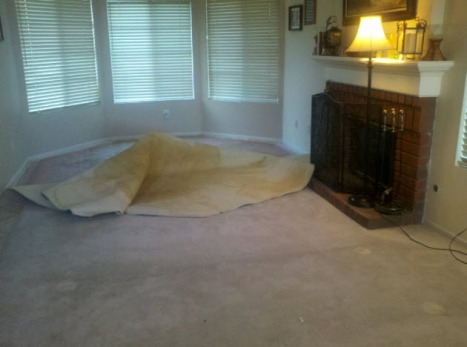 Ripped Out Carpet