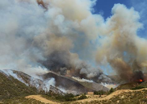 Powerhouse Fire - Daily News