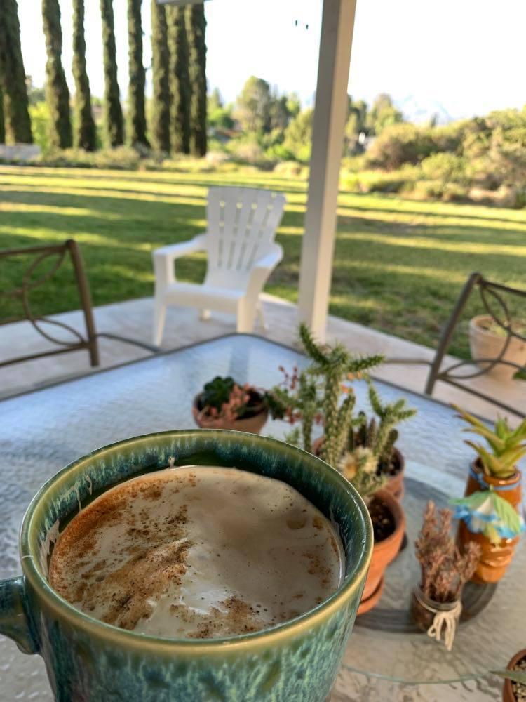 Morning coffee in the backyard.